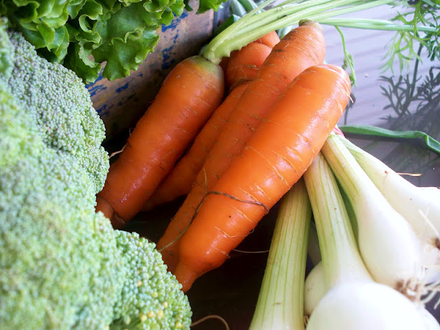 Farm fresh carrots broccoli scallions and broccoli