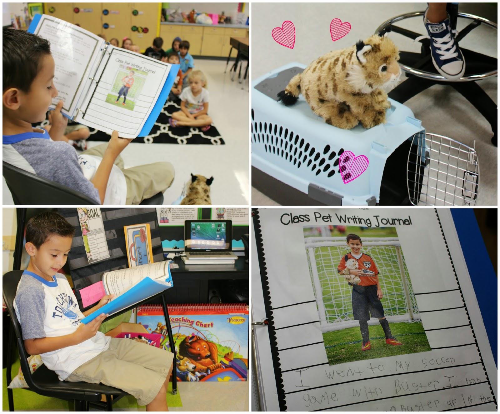 http://www.teacherspayteachers.com/Product/Class-Pet-Writing-Journal-298932