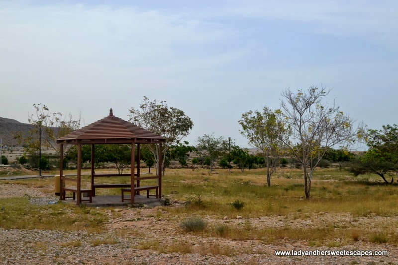gazebo at Hawiyat Najm Park