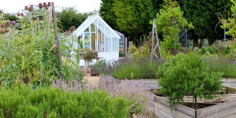 Havefolket: urtehave i grÅ nuancer