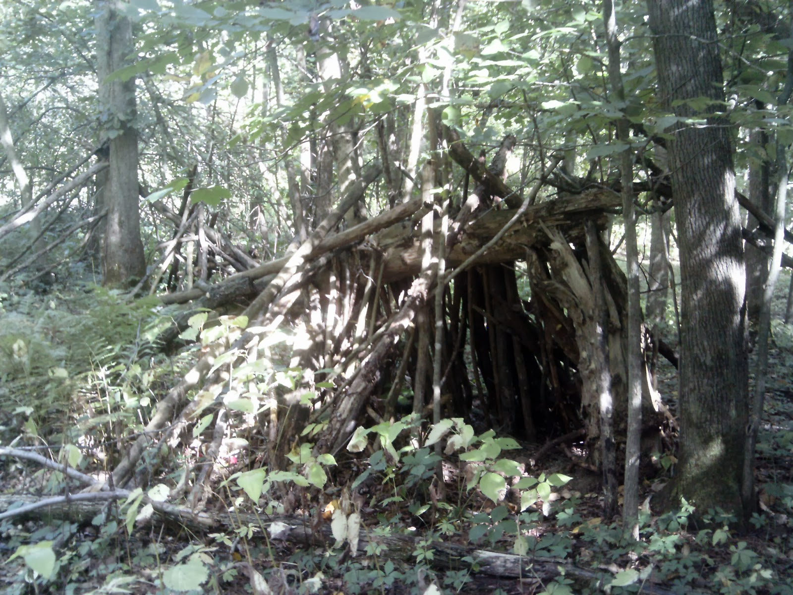 Day hiking trails how to build a lean to shelter in case of an