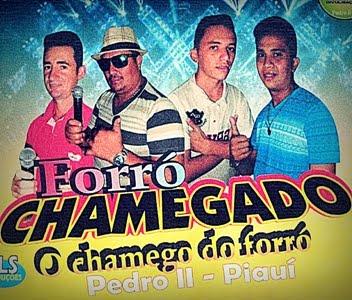 CD FORRÓ CHAMEGADO DE PEDRO II