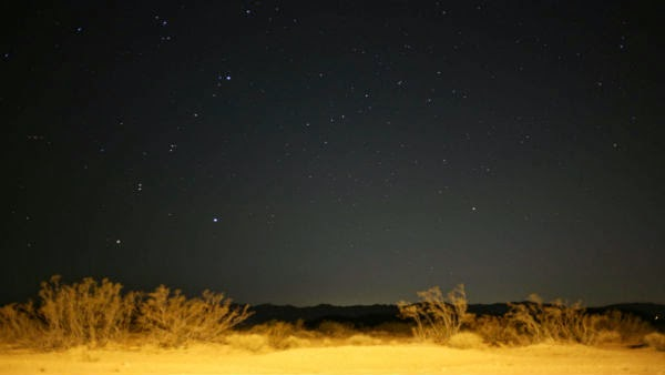 North Joshua Tree at night