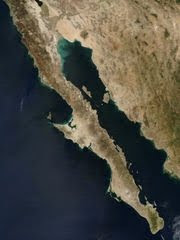 cuenca sedimentaria del golfo de california