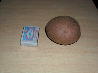 Семенной клубень картофеля