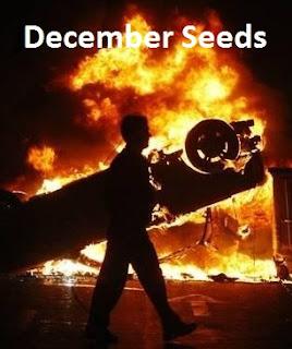 Ver December Seeds (2010) Online