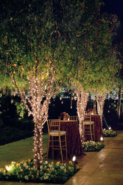 How To String Lights On A Tall Tree : Louisville Wedding Blog - The Local Louisville KY wedding resource: Wedding Lighting Ideas