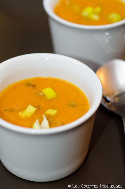 soupe potiron marron