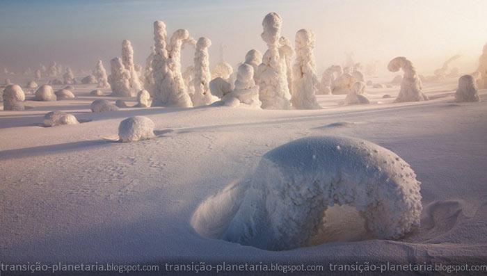 Sentinelas do Ártico - Transição Planetária