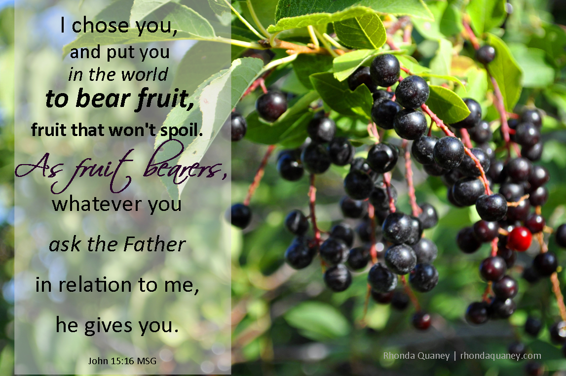 CROSSroads To Recovery: Bear fruit where you are planted