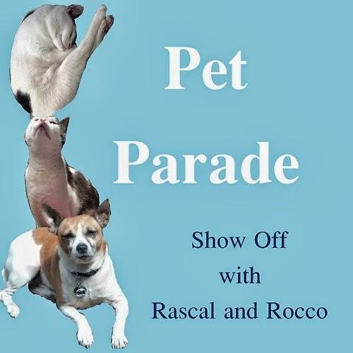 Pet Parade