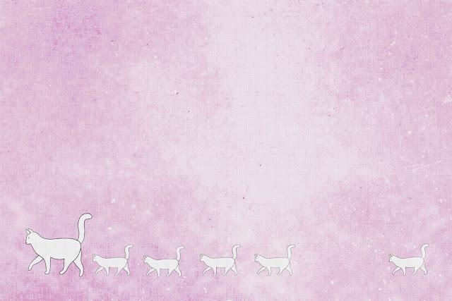 White cat Texture