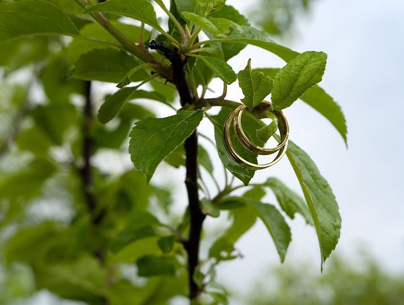 vestuviniai auksiniai žiedai