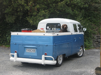 '59 VW D-cab, dog, 59Dcab, blue and white