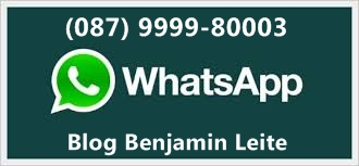 WhatsApp-Blog Benjamin Leite