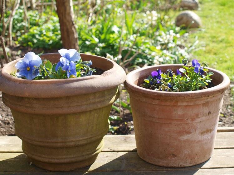 Hurtig løsning til en ordentlig have