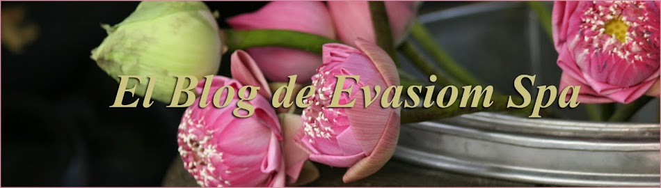 El blog de Evasiom Spa
