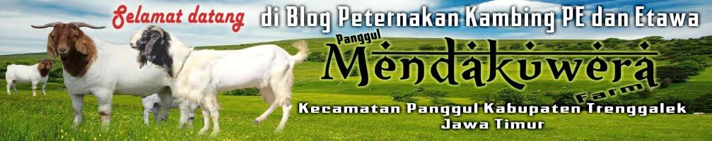 PANGGUL MENDAKUWERA FARM
