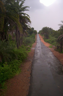 Way to Jadugora