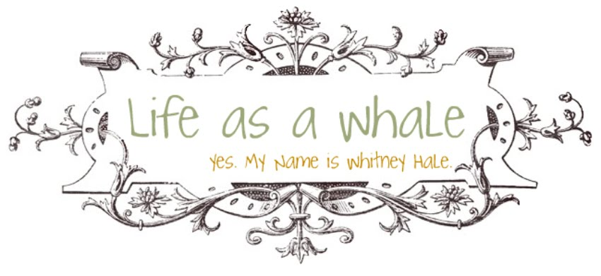 Life as a WHale