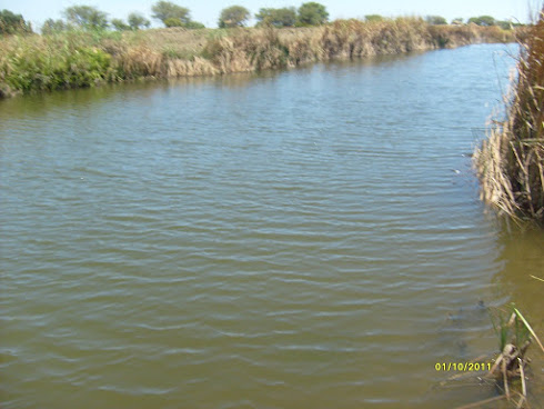 La Laguna del Finado Goyo
