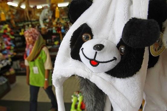 Panda Gergasi Zoo Malaysia