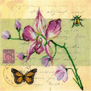 RTO, Почтовая открытка, Орхидея