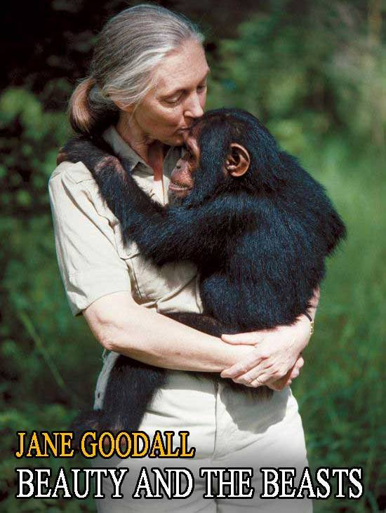 Beauty and the Beasts   Jane Goodall