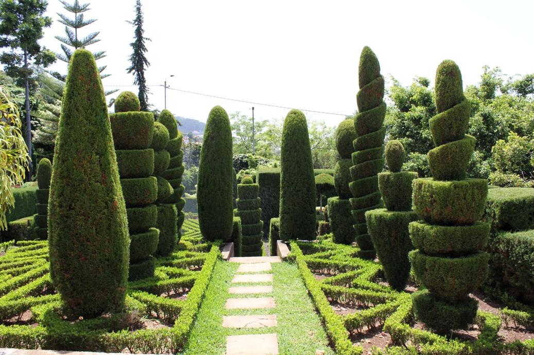 casar no jardim botanico : casar no jardim botanico:Adorámos! A ilha é fantástica, as pessoas muito acolhedoras e