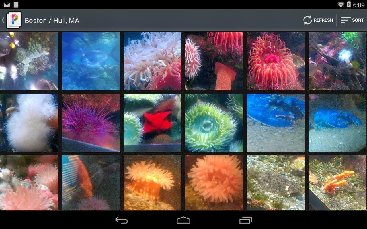 PicsPro for Picasa v4.2 Full Apk İndir