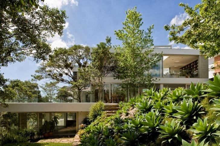 Vegetation around Modern dream home by Paz Arquitectura