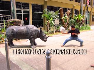 silat, budak silat, kuat, lawan, badak sumbu, bersilat, kung fu, silat badak, posisi silat, kekuda, ilmu batin, zoo taiping, cuti-cuti malaysia, pesilat