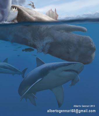 Megalodon Shark Vs Kil...