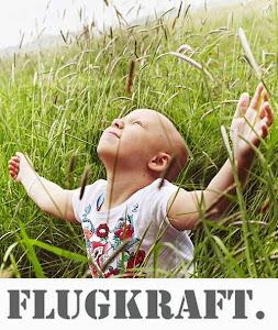Das Projekt FLUGKRAFT