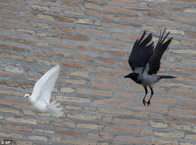 Pope dove peace white black crow seagull fail