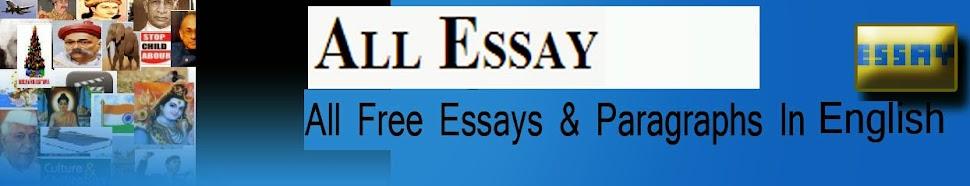All Essay
