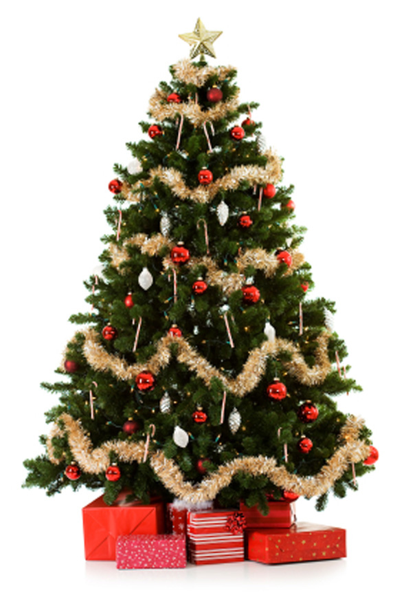 Christmas Tree Safety Tips ~ Residential Guide
