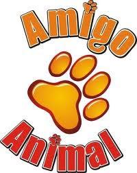 ONG Amigo Animal Curitiba
