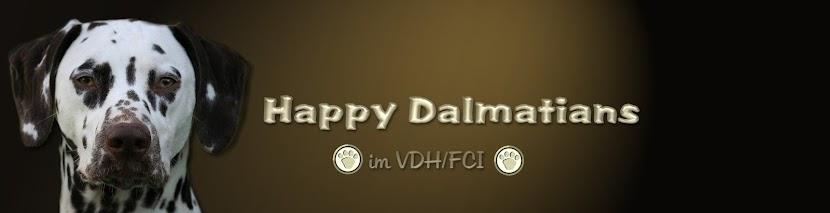 Happy Dalmatians