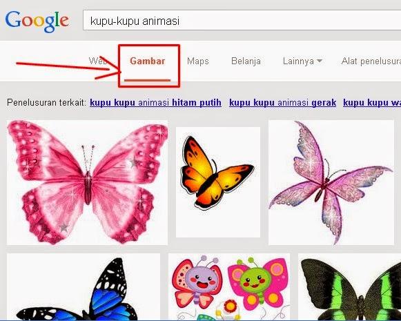 gambar hewan - gambar kupu kupu bergerak