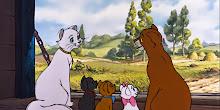 Xem phim Mèo Quý Tộc