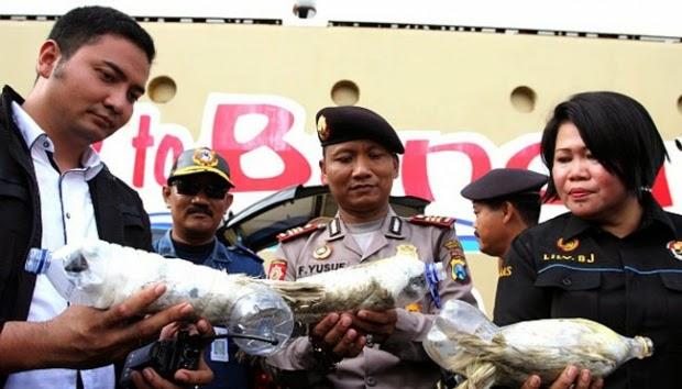 KLHK  : Pelaku Perdagangan Satwa Illegal Harus Dihukum