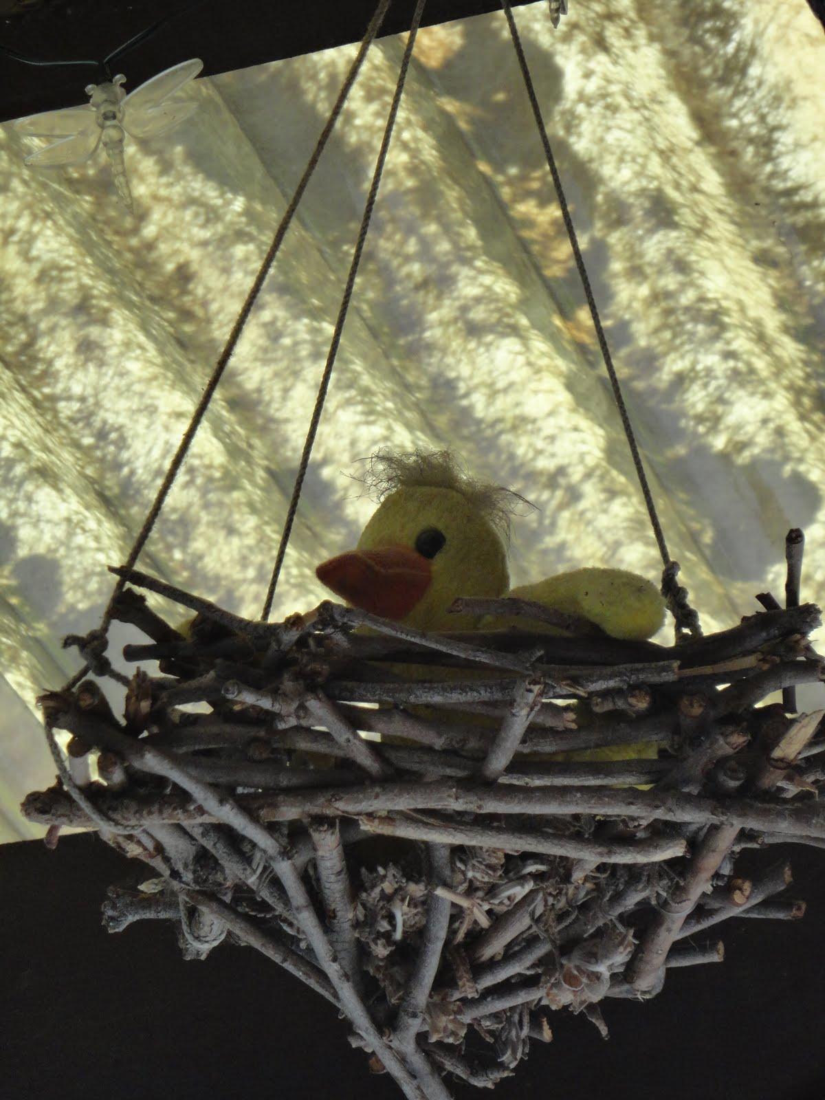 how to stop birds hanging under the carporr