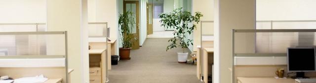 curatare birouri Bucuresti