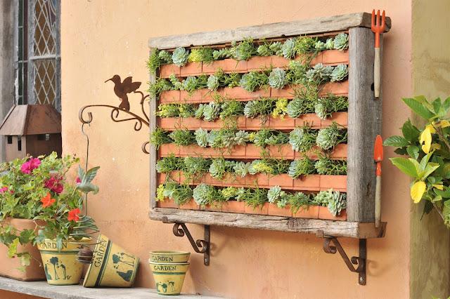 das Suculentas Arte Viva Quadros e Jardins Verticais de Suculentas