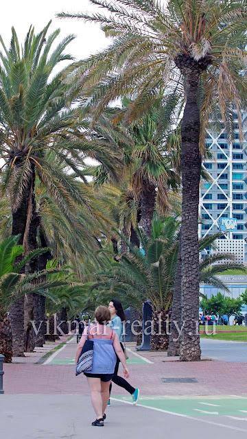 Недвижимость в Барселоне, Испания, гарантия комфортного отдыха у моря