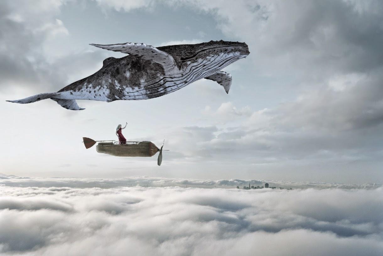Whale texture - photo#28