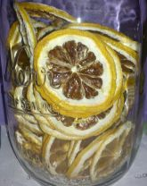 Dehydrating fruits and vegetables, dehydrated, dehydrating mushrooms, Dehydrated lemons, limes, oranges, pineapple, how-to, how to dehydrate,