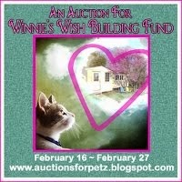 AUCTION FOR WINNIE'S WISH