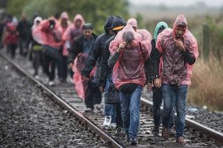 Finlandia pedirá a los solicitantes de asilo trabajar de forma gratuita,La Comisión Europea,  la Organización Internacional para las Migraciones,  la Unión Europea, El Gobierno de Finlandia,el ministro finlandés de Empleo, Jari Lindstrom, la decisión del Gobierno de Helsinki en torno a los refugiados ,el primer ministro de Finlandia, Juha Sipila,